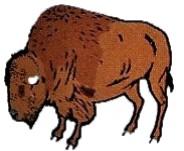 Les Terrines de Bison