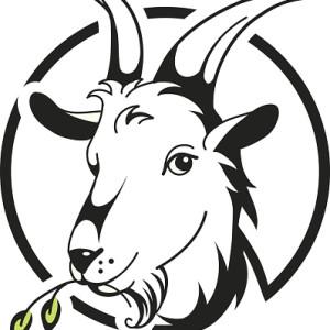 Les Terrines de Chèvre
